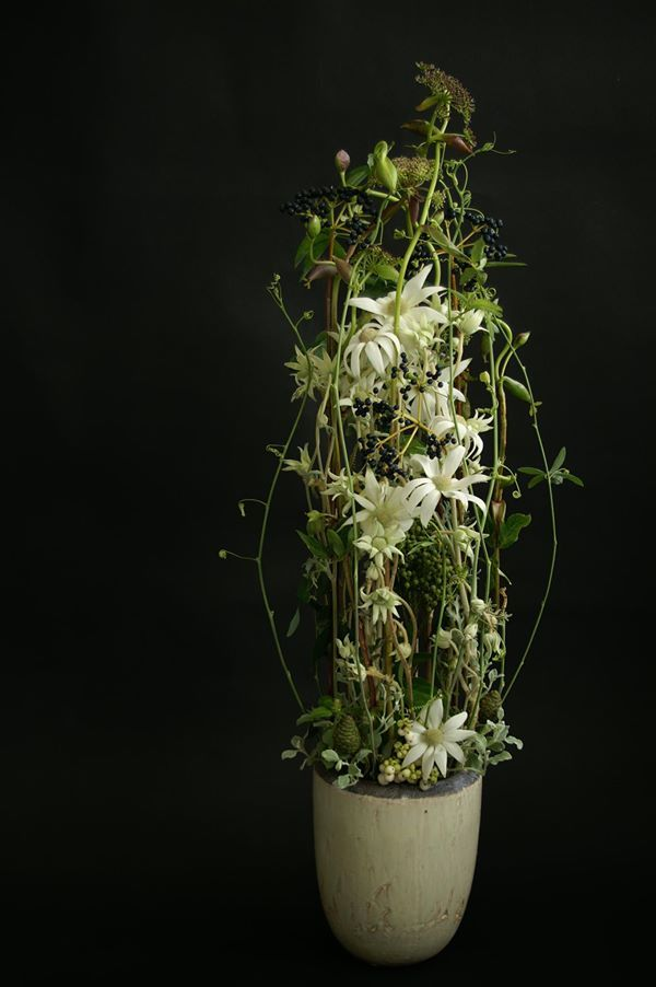 Omg I love these flannel flowers