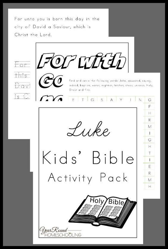 Amazon.com: study bible: Books