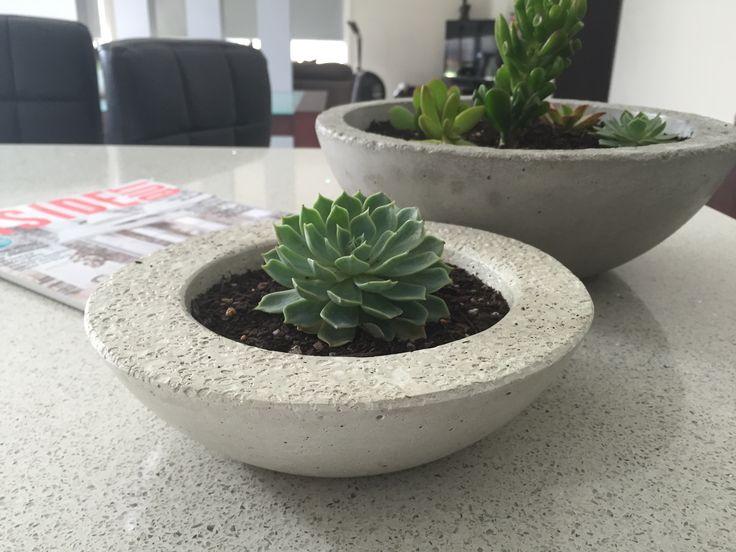 Succulent planter #concretepot #succulent #planter #succulove