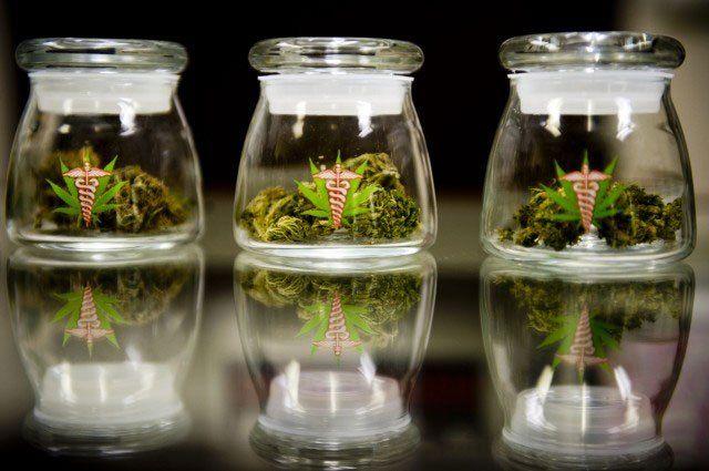 Cannabismedikamente reduzieren den Schmerzmittelverbrauch, zeigt eine US-Studie. Der Pharmaindustrie schmeckt das gar nicht. Über die Legalisierung von Cannabis wird international seit Jahrzehnten …