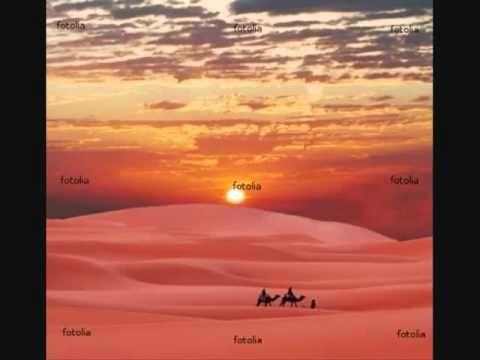 Desert Rose - Sting and Cheb Mami - Lyrics