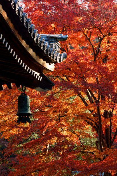 古都の朝-南禅寺 #南禅寺 #Autumn #Kyoto もっと見る