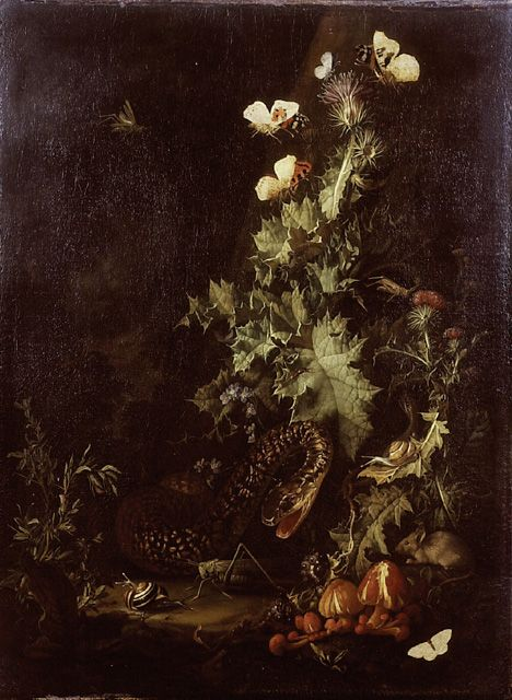 'Still Life with a Snake'by Elias van den Broeck (1649/50 - 1708):