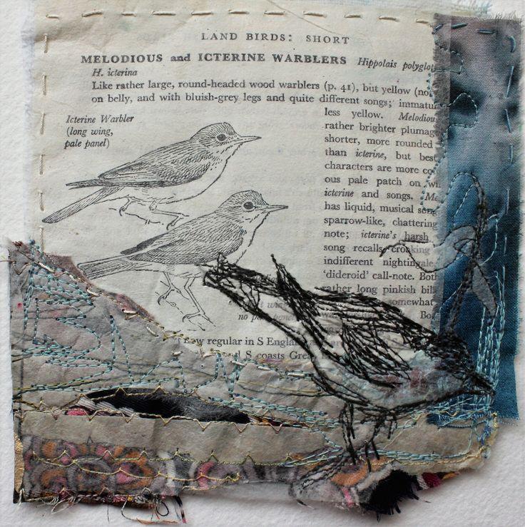 Landbirds Icterine Warbler (sold)  https://tictail.com/s/casholmes