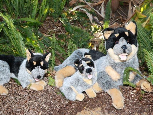Bocchetta Plush Toys Blue Heeler Cattle Dog Stuffed Dog Toy