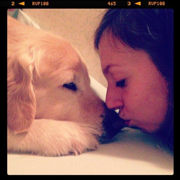That's Love! #aaron #goldenretriver #puppy #instapics #instadog #dogstagram #sweet