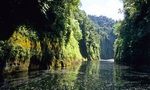 In 2012, New Zealand's Whanganui River became a legal entity with a legal voice.(photo).This is something that Latin American and Caribbean countries have promoted through the Quito Declaration, following the examples of Ecuador and Bolivia, which passed a law in 2011 granting all nature equal rights to humans.