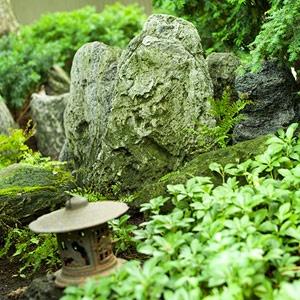 Spectacular A Japanese Meditation Garden