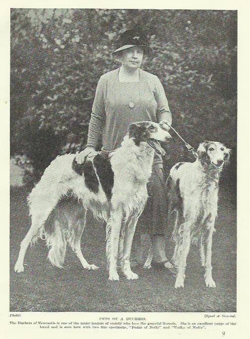 Sighthound Borzoi Russian Wolfhound Duchess by OLDBOOKSMAPSPRINTS