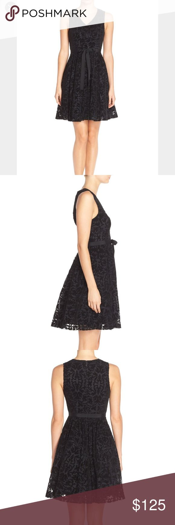 Tracy Reese Dress. Size 4. NWT. Tracy Reese Dress. Size 4. NWT. Plenty by Tracy Reese Dresses Mini