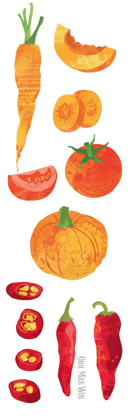 Beer Advocate editorial illustration. Brewing with vegetables Ohn Mar Win Illustration. carrot tomato pumpkin chilli