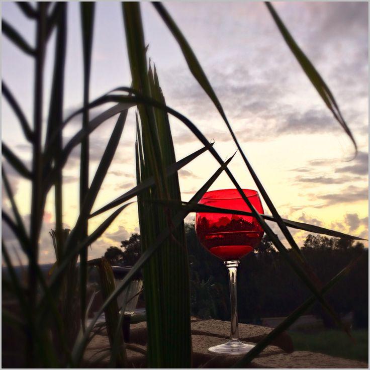 Wine glass view. @TeamWhites photo