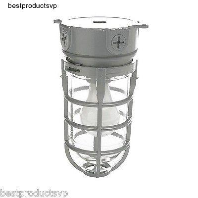 Outdoor Industrial Flush Mount Light Fixture Ceiling Exterior Indoor Metal Cage