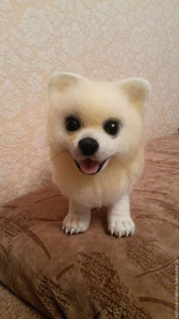 Купить шпиц - белый, собачка, пес, шпиц, щенок, шерсть 100%