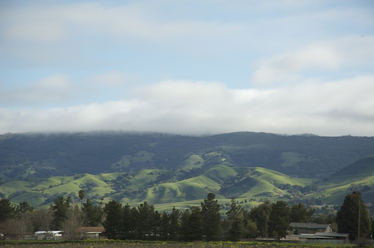 Traveling in Silicon Valley a few years ago... Lanscape and colors