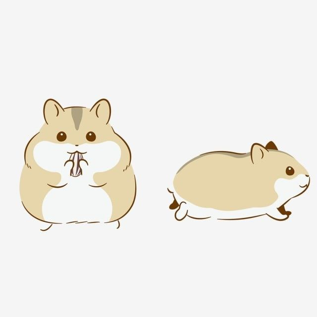 Cartoon Cute Hamster Hand Drawn Cartoon Character Hamster Clipart Original Element Commercially Available Png And Vector With Transparent Background For Free How To Draw Hands Hamster Cartoon Cute Hamsters