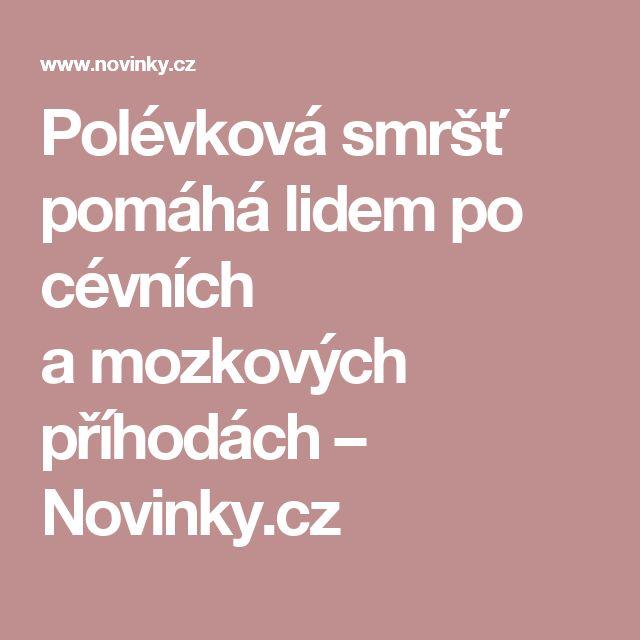 Polévková smršť pomáhá lidem po cévních amozkových příhodách– Novinky.cz