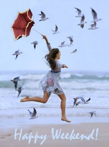 Image result for little birds happy weekend
