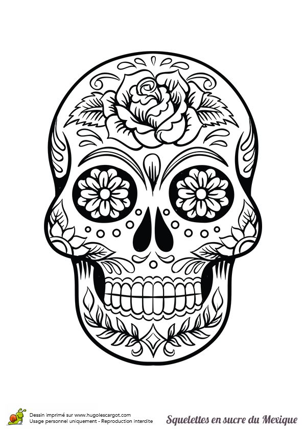 Coloriages squelette sucre roses fleurs