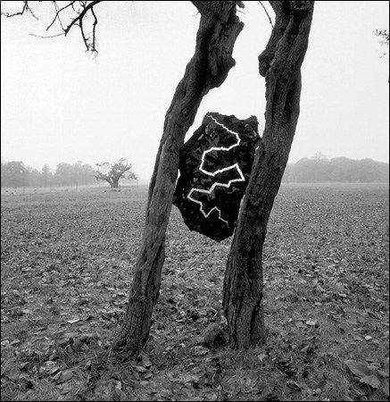 """Andy Goldsworthy es un escultor y fotógrafo nacido en el Reino Unido (1956), que realiza obras en el entorno natural lo que dentro del mundillo del arte llaman """"land-art"""" quees una te…"""