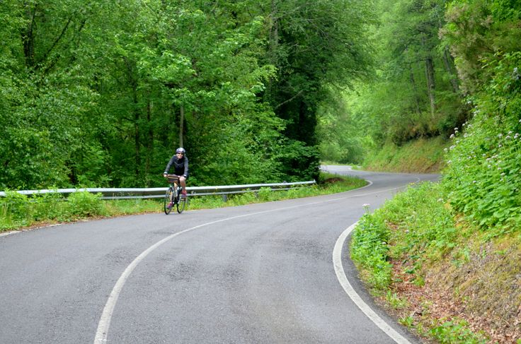 Green roads, Camino de Santiago Cycling