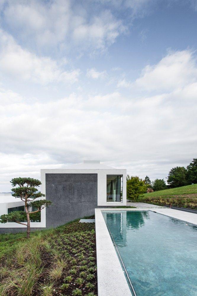 White + pool