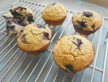 Gluten-free Blueberry Lemon Muffins, with coconut flour, honey, cinnamon and butter substitute!