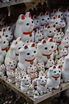 Gotoku-ji, le temple des chats en plein Tokyo