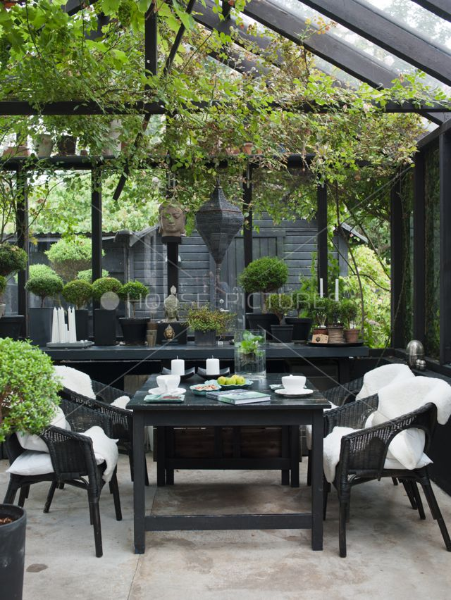 Black and gray structures are such a great foil for the variety of greens in a garden.
