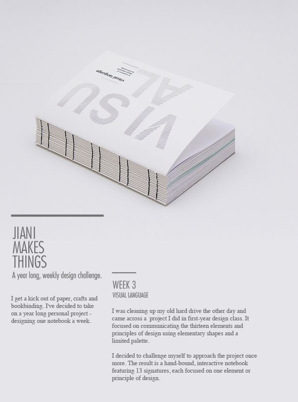 Visual Language by Jiani Lu, via Behance