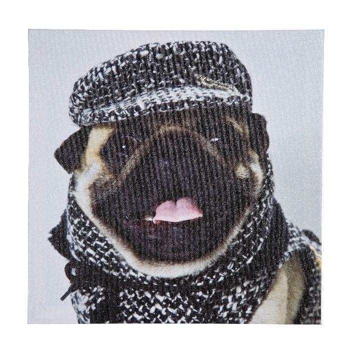 Πίνακας Mops Fashion Assorted 28X28CM Ένα pug fashion icon! Το πιο δημοφιλές σκυλί ντυμένο με ζεστά ρούχα και αδιάβροχο σε μορφή πίνακα θα σας φτιάχνει τη διάθεση όποτε το βλέπετε.  Ψηφιακή εκτύπωση σε καμβά. Οι διαστάσεις και η τιμή αφορούν κάθε τεμάχιο χωριστά.