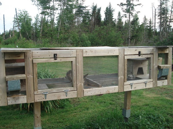 12 best rabbit hutches and ideas images on pinterest for Outdoor rabbit hutch kits