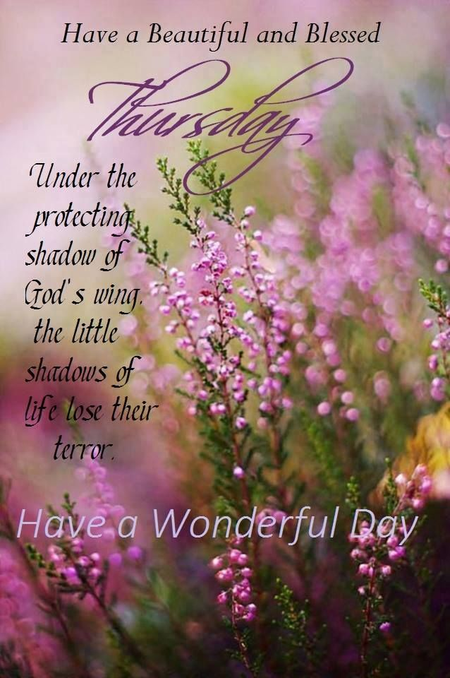 Have a Beautiful and Blessed Thursday.