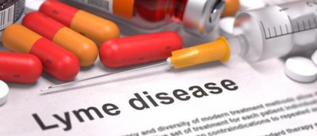 lyme disease, dr. lyme, lyme, tick bites, bullseye rash, Dr. Stephen Petteruti, The Petteruti Center, chronic lyme, Rhode Island, RI