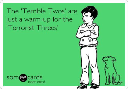 The 'Terrible Twos' are just a warm-up for the 'Terrorist Threes'...(currently being experienced in my home...ugh!)