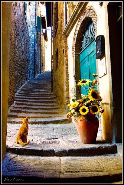 Cortona, Province of Arezzo ~ Tuscany, Italy