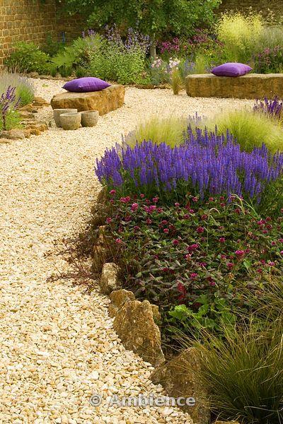 Ghiaia giardino con posti a sedere di roccia, cuscini viola, Trifolium repens William, Salvia X Supeba, Stipa tenuissima