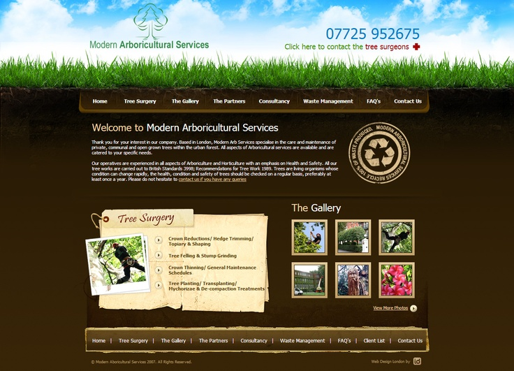 Modern Arboricultural Services, 2nd January 2008