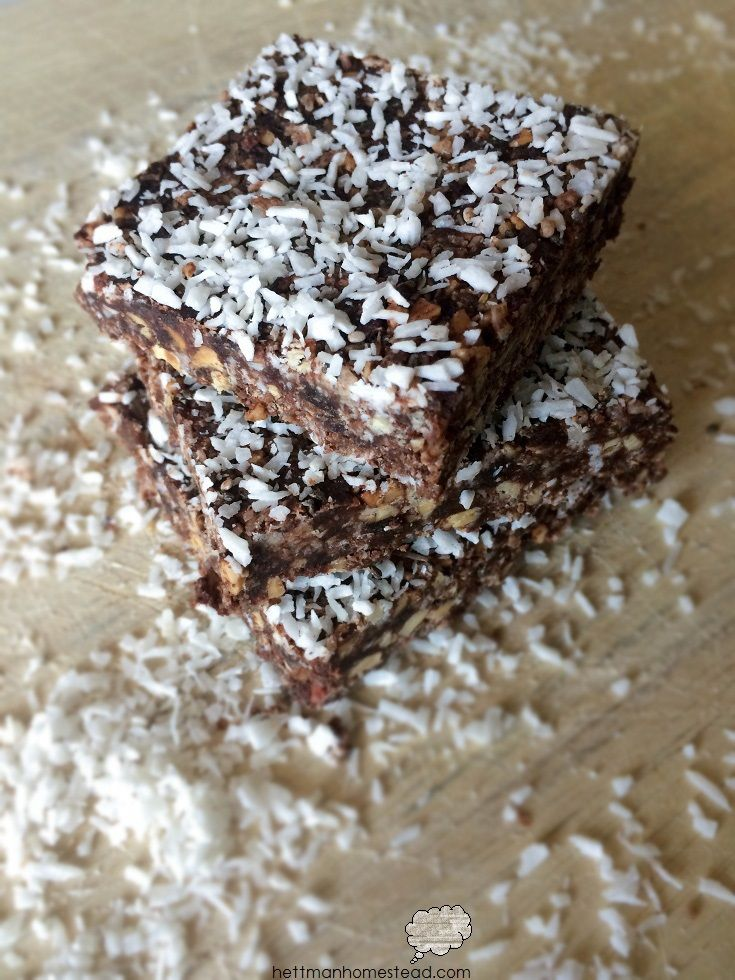 CLEAN & INEXPENSIVE protein bars made in 15 minutes!