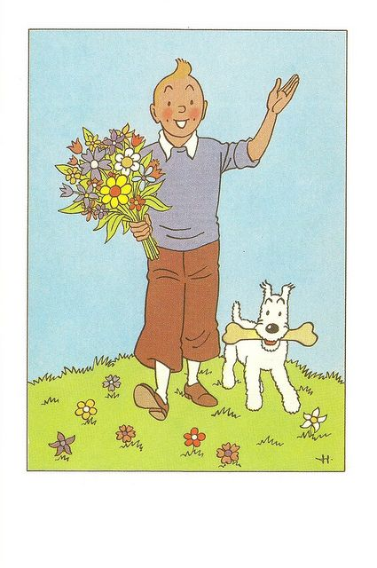'The Adventures of Tintin' by Hergé