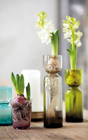 Celina hyacinth vase, House Doctor.