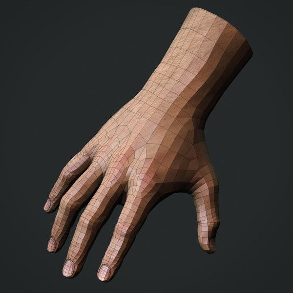 Realistic Male Hand