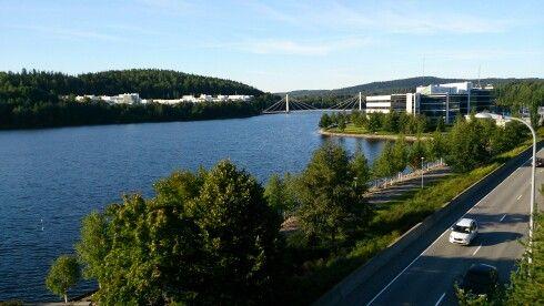 Mattilanniemi campus.