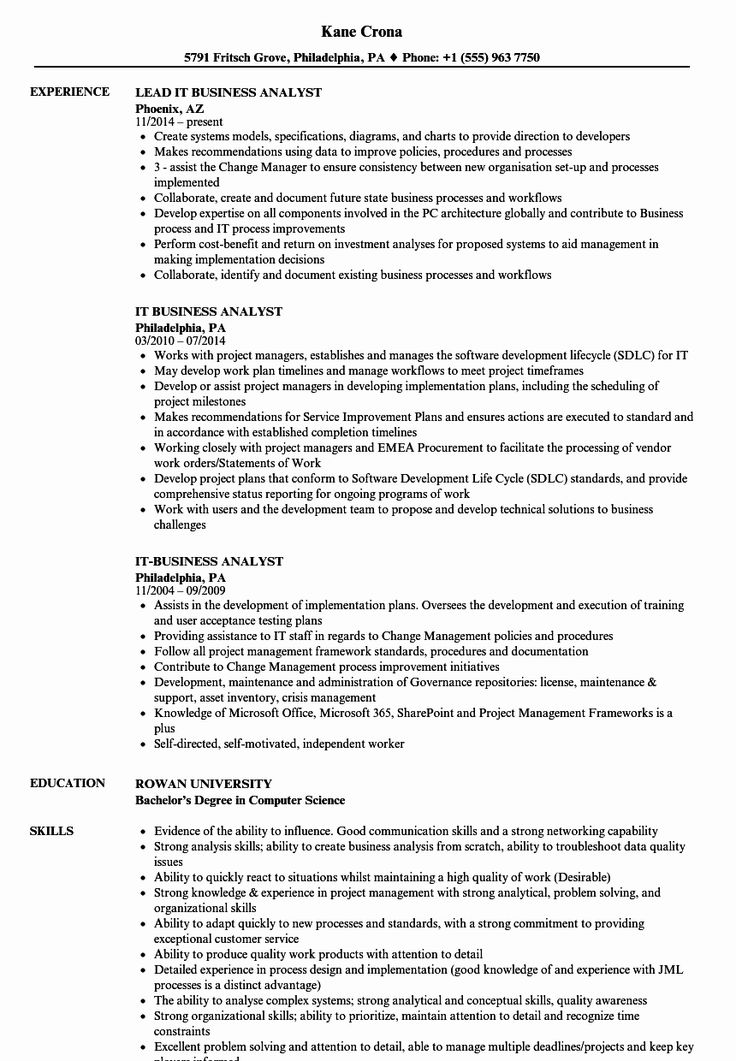 Sample Business Analyst Resume New It Business Analyst