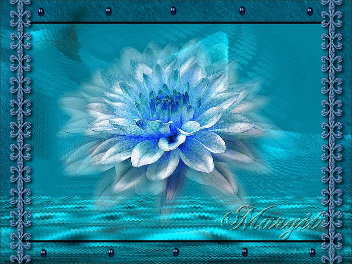 A lótusz virága