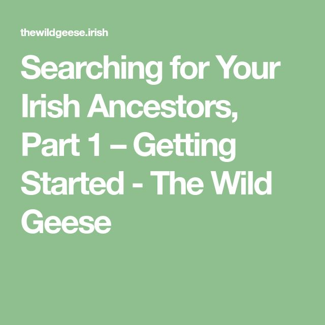 Searching for Your Irish Ancestors, Part 1 – Getting Started - The Wild Geese