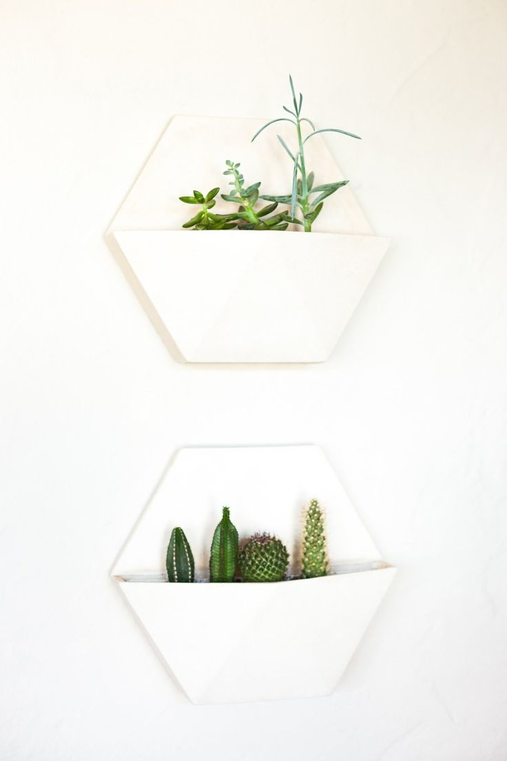 Succulents on the wall - Kenya & Conner's Chic and Airy Marina District Apartment