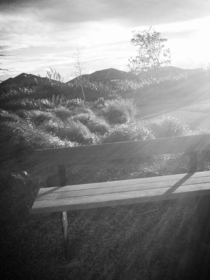 A random bench