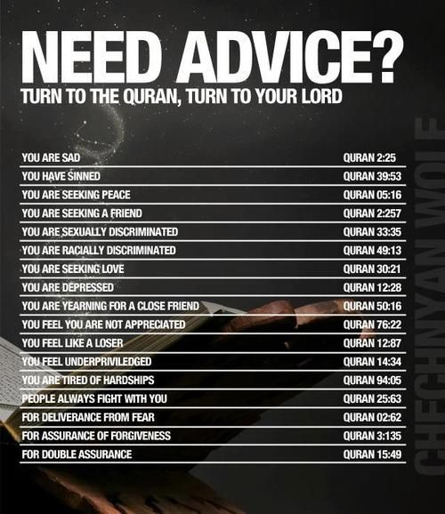 strivingmuslim:  Need advice? Turn to the Quran, turn to your Lord. A list of Quran passages for you to share.