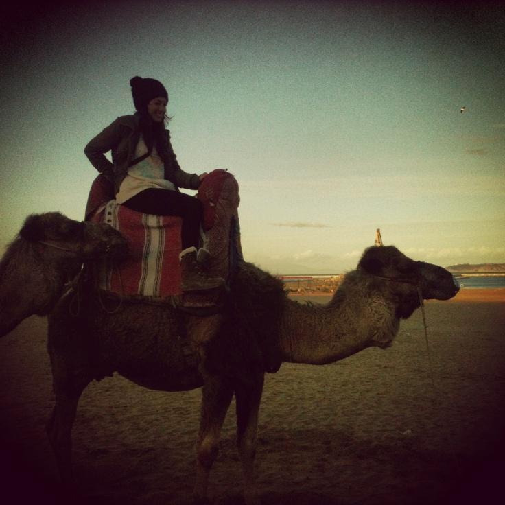 Marruecos. Norte de África. La camella se llama Leyla ...